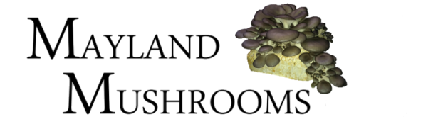 Mayland Mushrooms Logo